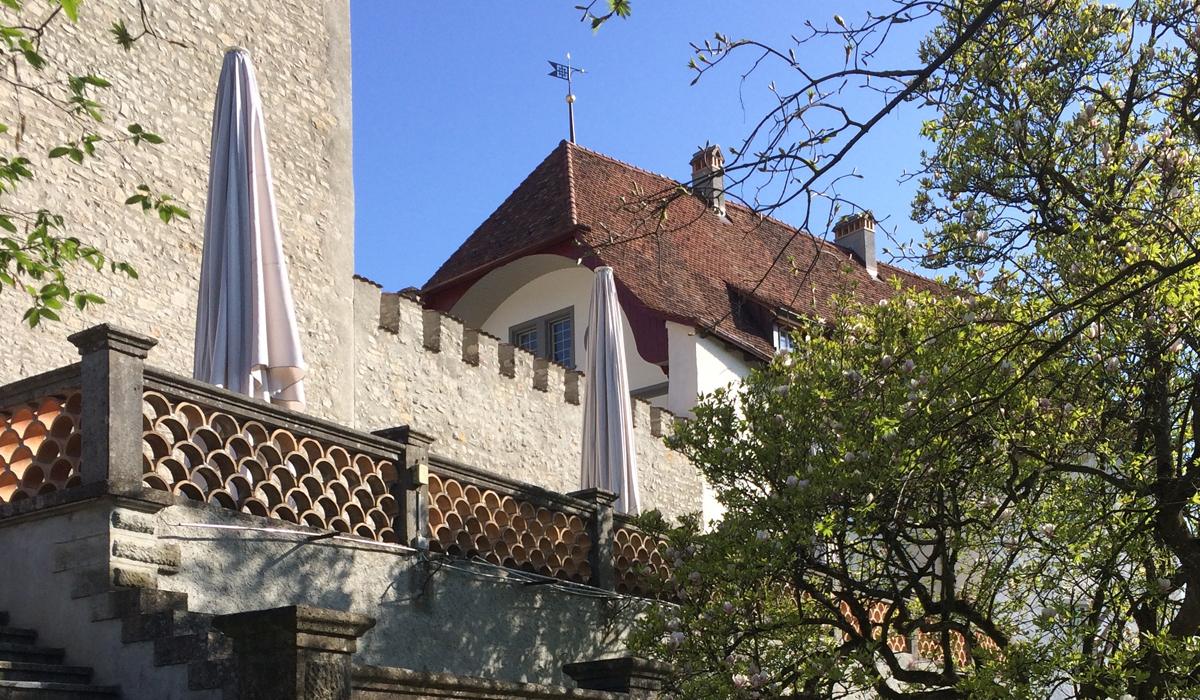 Fragen Und Antworten Zur Umzonung Von Schloss Wildenstein Buser